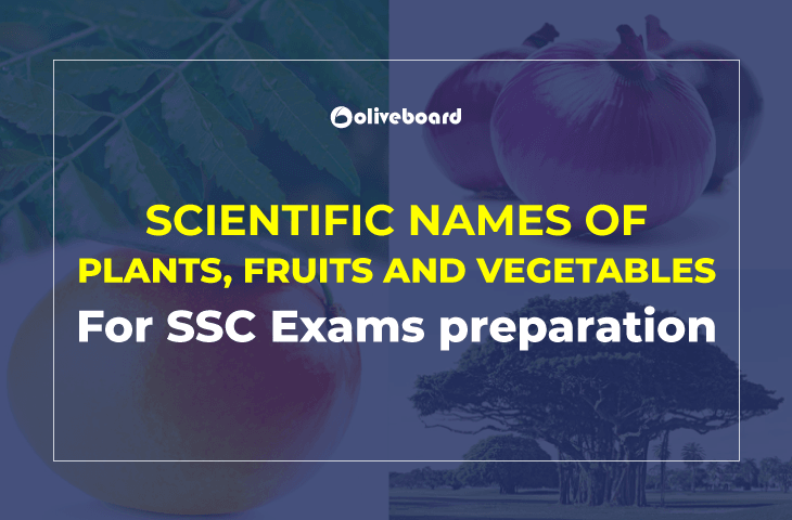 Scientific Names of Plants, Fruits and Vegetables